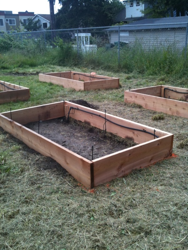 raised-bed-instructions