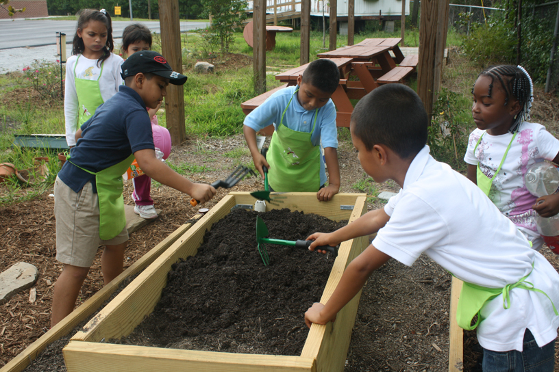 Stripling Kids and Raised Beds