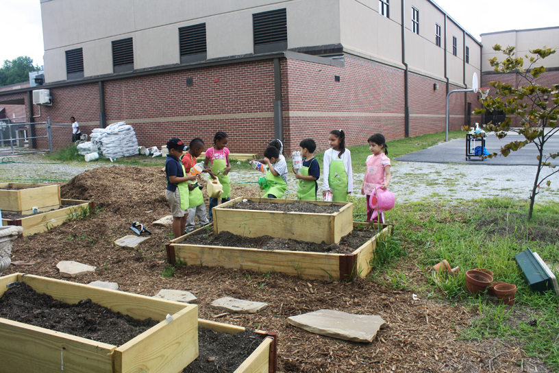 Stripling Raised Beds