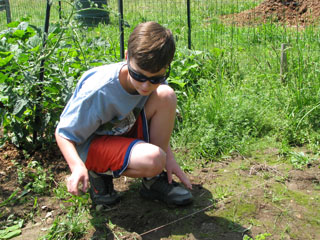 Bobby weeding the Cub Scouts Pack 44 garden!